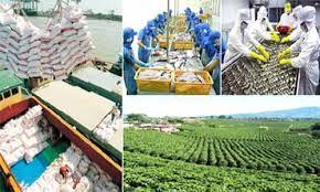 規模を拡大し、農業の持続可能な発展へ