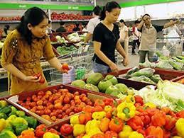 (日本語) ベトナム国家財政監査委員会の最新報告書によると原油価格の下落は2015年の消費者物価指数(CPI)を1.1%引き下げる