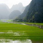 【ブログ】農業大国ベトナム?
