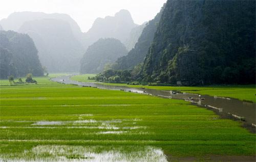 ベトナムの田園